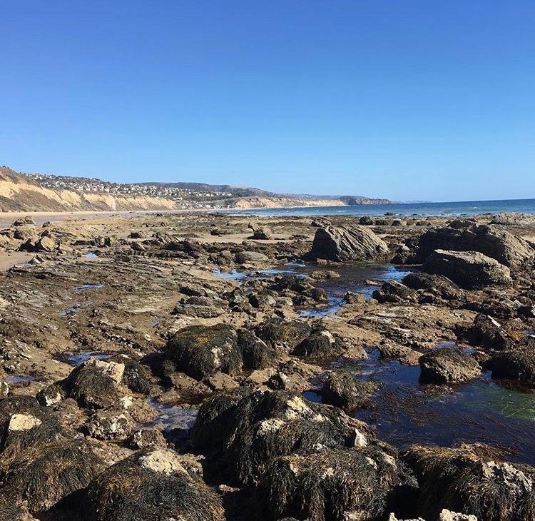 0919f40eeb Crystal Cove rocks